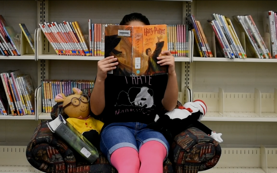 """Check out our literacy week music video """"Take A Book""""!"""